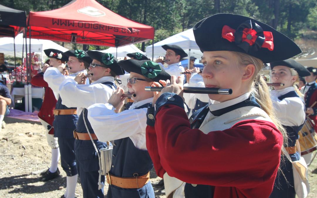 The Great Pine Cone Festival